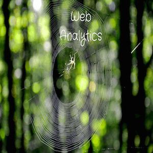 Image - Web Analytics Basics